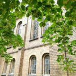 Foto: Lindenblüte an der Kirche Schmachtendorf